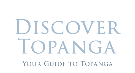https://discovertopanga.com/wp-content/uploads/2019/04/dt-property-logo.png
